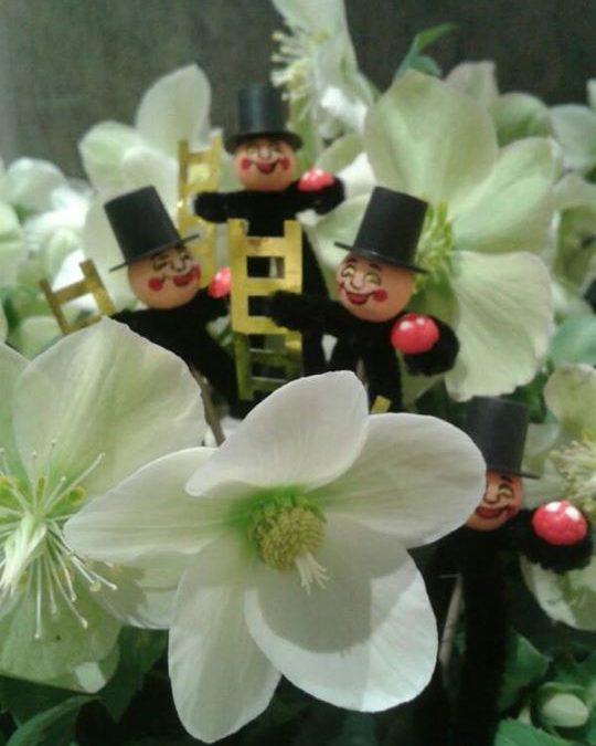 Liebe Blumenfreunde, Facebook-Freunde und …